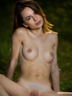 Free pictures of sexy brunette babe Denisa G. strips naked and exposes her lovely tits, tight ass and nice shaved pussy in the forest.